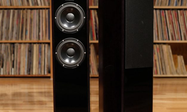 DeVore Fidelity Gibbon Super Nine Loudspeakers